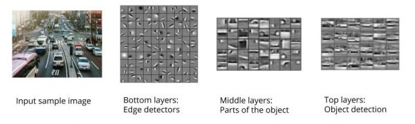Figure 2: Layers of CNN. Image sources: Unsplash; Lee H. et al. (2011). Unsupervised Learning of Hierarchical Representations with Convolutional Deep  Belief Networks. Communications Of The ACM.